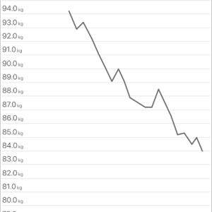 【前編】パーソナルジムで半年で12kgやせた後、緩やかに12kg増えた【効果・比較】