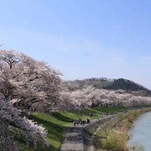 NHK大河「樅の木は残った」の船岡へ【19国内旅行】