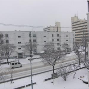 冬の必須アイテム