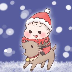 素敵なクリスマスを…