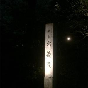 六義園の紅葉ライトアップが幻想的(2017年)