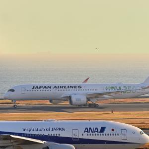 羽田の朝はJALのA350から始まります