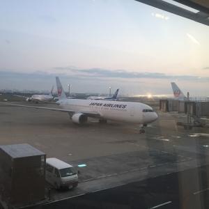 日本へ緊急帰国 ② 空港でPCR検査