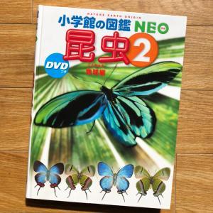 『小学館の図鑑NEO 昆虫2 地球編』