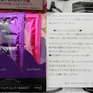 【私ももらえた!画像あり】花王セグレタのシャンプーコンディショナーをもらいました♡