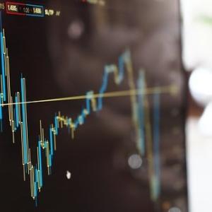 初めての株:株未経験の素人が指し値で購入に挑戦②~やっと購入できました~