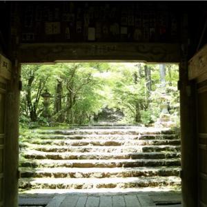 【五台山】竹林寺のやさしい空気にリラックス&お遍路さんと一緒にゆったり参拝