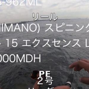 東京湾で釣り