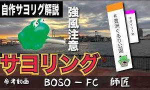【豊洲ぐるり公園 #釣り初心者 #サヨリ】ポンコツ自作サヨリグで、サヨリング!参考動画はBOSO-FCのBFC師匠です!