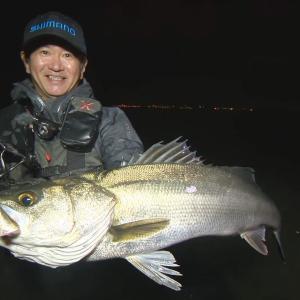 【いつでも釣り気分!】#262 極上の曲がりで制す! 秋の東京湾シーバスゲーム