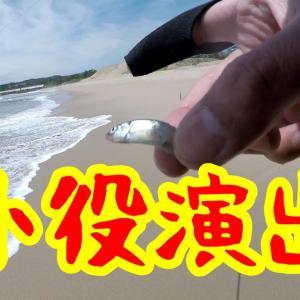 稚鮎が打ち上っていた北茨城サーフ