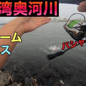 【釣り#26】東京湾奥河川デイゲームシーバス!A.EP1