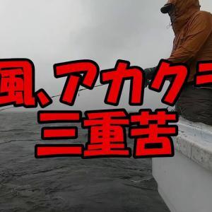 タナが上下するアジに翻弄され時化のシロギスに手も足も出ず~東京湾二大釣魚に癒してもらうつもりが…~(2020.6.13 鮫洲・和彦丸 シロギス・アジリレー)
