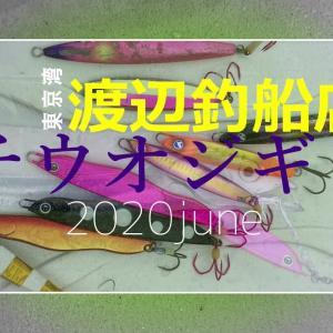 東京湾渡辺釣り船店タチウオジギング6月