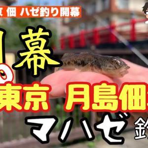 【ハゼ釣り】2020東京佃掘 ハゼ開幕!