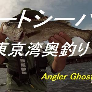 東京湾奥釣り・まじぱしルアーでボートシーバス