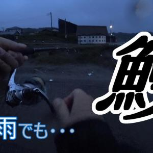 干上がりかけのビーチに雨で増水した川でうなぎ爆釣!? 「千葉県の全部の川でうなぎを釣るシリーズ」