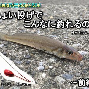 [釣り]神奈川 9月半ばの平塚で釣りをしたら爆釣だった! 前編  30代独身パートの釣り人生