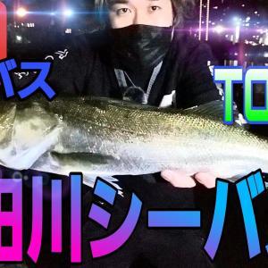シーバス 隅田川 東京湾シーバス オカッパリで釣る! 大都会の釣り! tokyo fishing