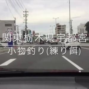 【北関東栃木県宇都宮市】小物釣り(練り餌)
