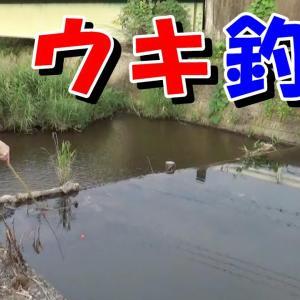 小川でウキ釣り【初心者向け】栃木県茂木町でのんびり小物釣り