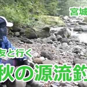 旧友と行く秋の源流釣行  /   ~宮城の渓流~ / みちのく釣りの旅  フライフィッシング渓流釣り(4K) fly fishing