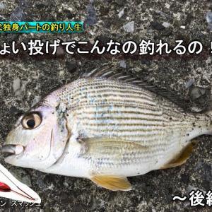 [釣り]神奈川 9月半ばの平塚で釣りをしたら爆釣だった! 後編  30代独身パートの釣り人生