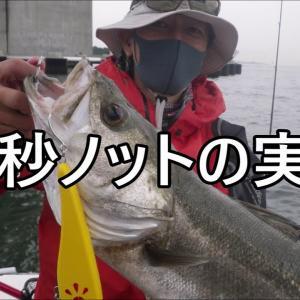 PEとリーダーの結び方・10秒ノットの実際【シーバス東京湾奥釣り攻略】