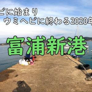 【富浦新港】年末の内房で釣り納め!【海釣り】