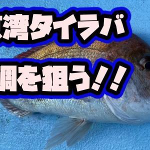【タイラバ】東京湾で大鯛狙う!