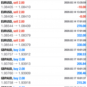 【FX・BO日誌】本日の取引 2020年2月13日 GOLDとEUR/USDとGBP/AUDで25万円の利益!!