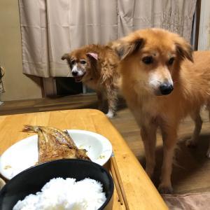 干尽物語 400円 定食