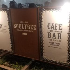 【カフェ・ソウルツリー】二子玉川駅の外れにあるアメリカンなカフェに妻と行ってみた