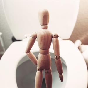 【賃貸】トイレ詰まり 意外と簡単に詰まるので注意 詰まった場合の対処法