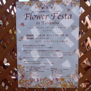 花咲くショッピングモール~フラワーフェスタinつくば2019