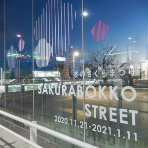 咲け、冬の桜よ~JR日立駅自由通路のイルミネーション