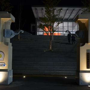 福岡市の夜の動植物園体験レポ。混雑や出店なども詳しく紹介