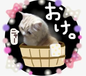【おすすめ!自作ラインスタンプ】激かわ♡もふねこミルク3(ダジャレ編)のご紹介!