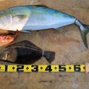 2020 1/20大津島で釣り