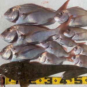 2020 10/19野島で釣り