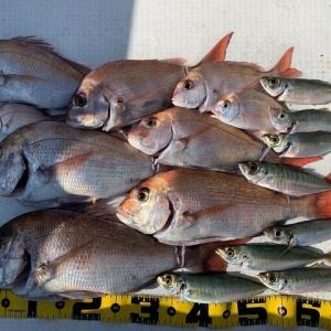 2020 10/26野島で釣り