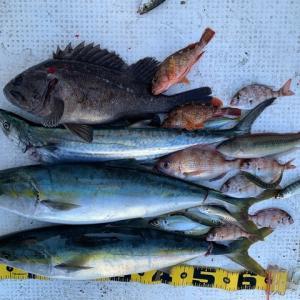 2020 11/25 粭島で釣り