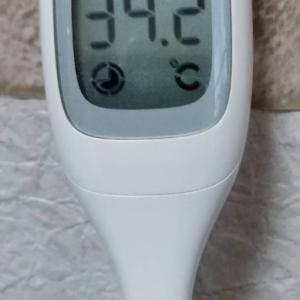 目指せ体温UP 私なりの低体温&冷え性対策 おすすめ五選!!