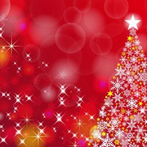クリスマス プレゼントをもらえる、なんて『しあわせ』でしょう。