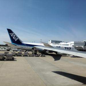 Flightradar24 | フライトトラッカーで世界釣り旅行!?