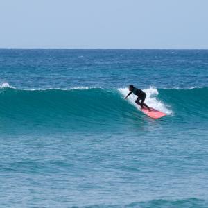 ゆっくり治して また 夏には一緒に サーフィンしよ!!
