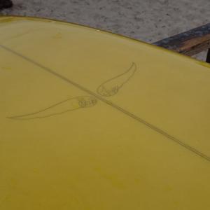 スキップフライ カリフォルニア サーフィン 最新動画