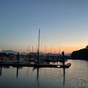 やっぱり夜明け前が好き 鹿児島のヨットハーバーで車中泊  釣りとキャンピングカー