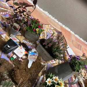 心に歌を。お庭(はないけど)にはお花を...スマートブリーズワンの家
