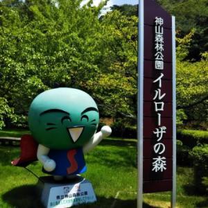 徳島県立神山森林公園イルローザの森で遊びつくす